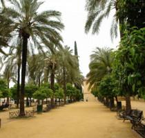 Weer en klimaat in Córdoba