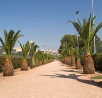 Weer en klimaat in Lissabon