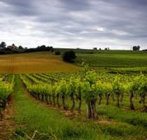 Ligging Bordeaux