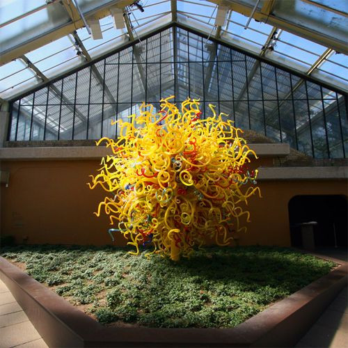 Plant in de Royal Botanic Gardens