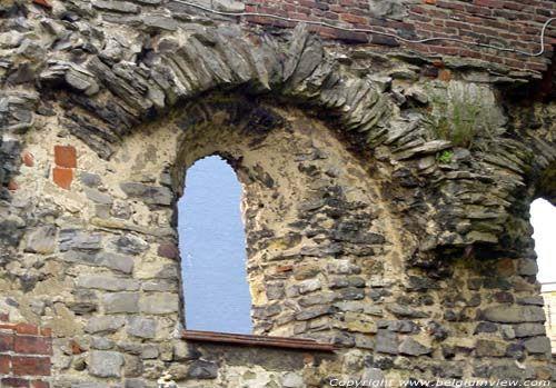 Beeld van de Ruïnes van de Sint-Baafsabdij