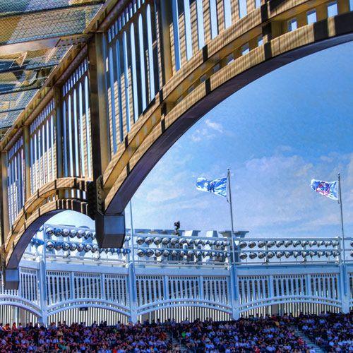 Fries van het Yankee Stadium