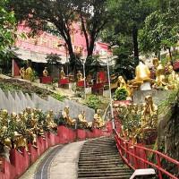 Trap naar de 10.000 Buddha's Temple