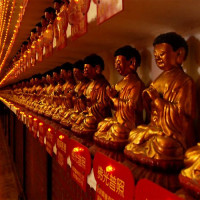 Boeddhas in de 10.000 Buddha's Temple