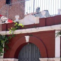 Poort van de Ahrida Synagoge