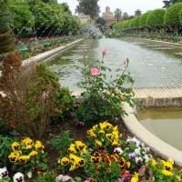 Waterpartij in het Alcázar de los Reyes Cristianos