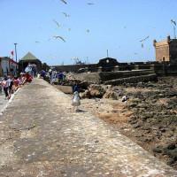 Beeld uit de Ancienne Medina