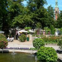 Foto in de Botanische tuin