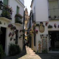 Straatbeeld op de Calle de las Flores