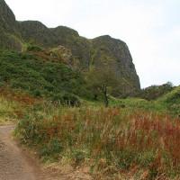 Zicht op de Cavehill
