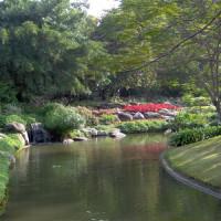 Meertje in het Chatuchak Park
