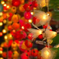 Lampjes op de Chatuchak Weekend Markt