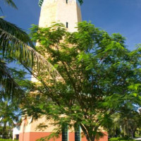 Toren in Coral Gables