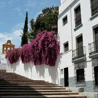 Trappen aan de Cuesta del Bailio