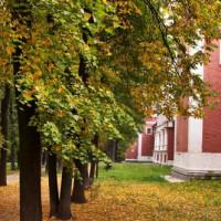 Bomen aan het Donskoy-klooster