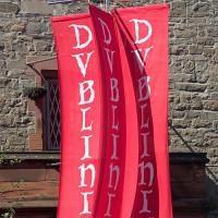 Vlaggen bij Dublinia