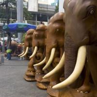 Beelden van olifanten aan het Erawanschrijn
