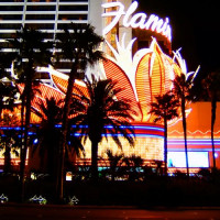 Lichten van het Flamingo Las Vegas