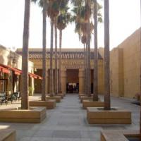 Palmbomen aan het Grauman's Egyptian Theatre