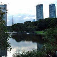 Vijver in de Hama Rikyu tuin