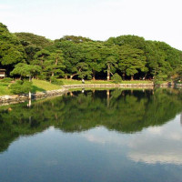 Tafereel in de Hama Rikyu tuin