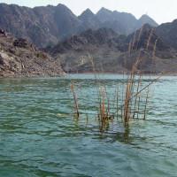 Vijver van de Hatta Rock Pools