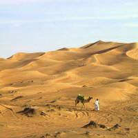 Beeld van de woestijn