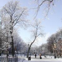 Winterbeeld op de Esplanadi