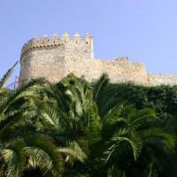 Bomen aan het Castillo de Gibralfaro