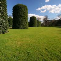 Heggen in Kensington Gardens