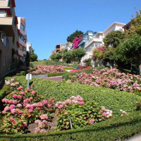 Bloemenperken in San Francisco