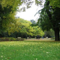 Park op Margareta-eiland