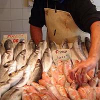 Vis in de Mercado Atarazanas