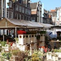 Plantenkraam op de Nieuwmarkt