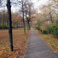 Wandelpad in Park Tiergarten