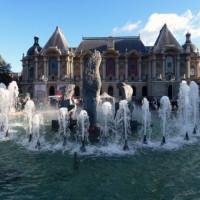 Fontein van Palais des Beaux-Arts