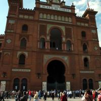 Paarden in de Plaza de Toros