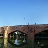 Zicht op de Puente del Real