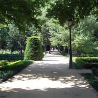 Wandelpad in de Real Jardín Botánico