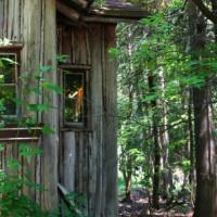 Hut op Roosevelt Island