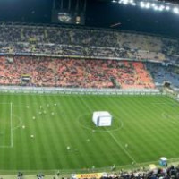 Grasmat van het San Siro-stadion