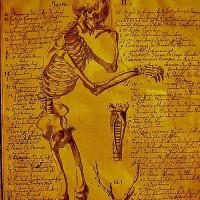 Medische tekening