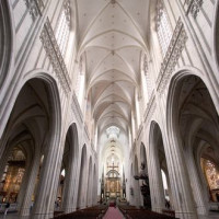 Middenbeuk van de Antwerpse kathedraal