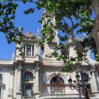 Bomen voor het stadhuis