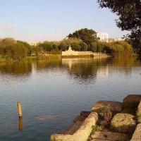 Vijver in het Parque da Cidade
