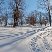 Sneeuw op de Tähtitorninmäki