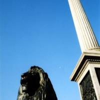 Leeuw voor Nelson's Column
