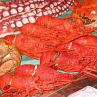 Kreeft op de Tsukiji-vismarkt