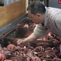 Werken op de Tsukiji-vismarkt