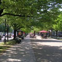 Straatbeeld van Unter den Linden